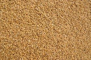 La proteína de soja y el estreñimiento