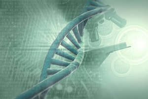 Binary Code Vs. Genetic Code