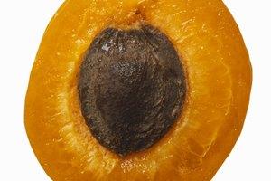 Alimentos ricos em carbonato de litio