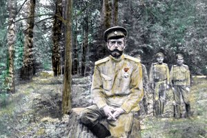 What Occurred That Forced Czar Nicholas II to Step Down?
