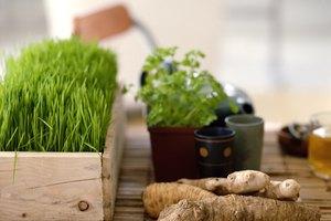 Desintoxicación con hierbas para la abstinencia de drogas