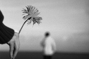 Actividades juveniles relacionadas con el perdón