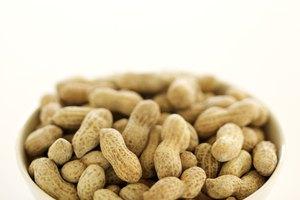 Cómo salar y asar cacahuetes frescos