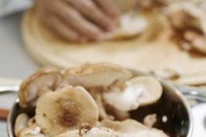Sheephead mushrooms can be sauteed, roasted or grilled.