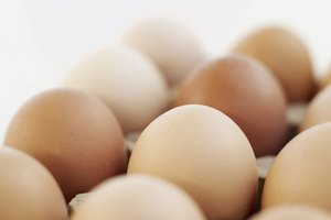 Alimentos con alto contenido de lecitina