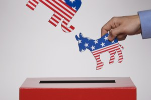 What Is the Purpose of Primary Elections in the Electoral Process?