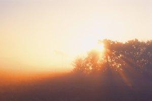 ¿Cuánto tiempo se tarda en sentir los efectos de los suplementos de vitamina D?