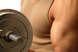 ¿Cuánto tiempo toma notar el desarrollo muscular?