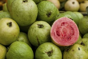 The Uses of Guava Leaf