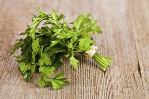Natural Remedies for Improving Kidney Function