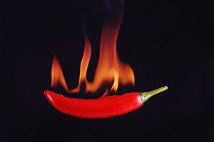 Las causas de la contaminación de los alimentos