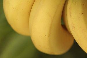 ¿Cuánto hierro hay en los plátanos?