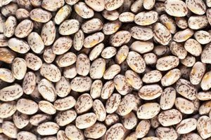 Pinto beans are a healthy alternative to meat.