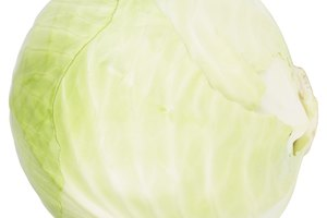 Why Will My Cabbage Not Form a Head?