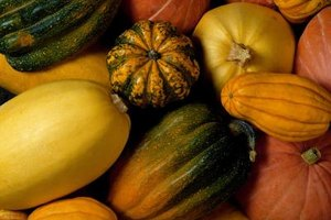 Squash grows on the ground so the rind is often dirty.