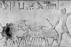 Ancient Egyptian Beliefs About Destiny