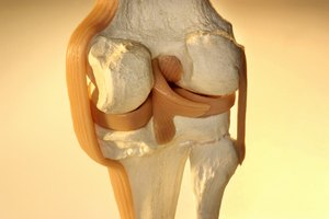 ¿Existe algún ejercicio para ayudar a detener el crujido de rodillas?