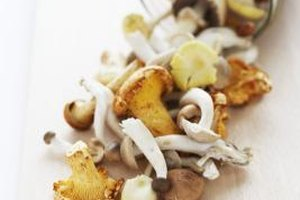 Mushrooms lend meaty texture and earthiness to any dish.