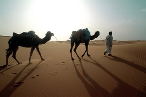 Nomadic Life & the Expansion of Islam