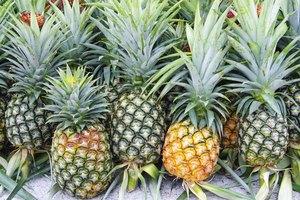 Alimentos ricos en ácido glicólico