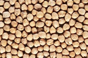 Chickpeas, or garbanso beans, are ground to create besan.