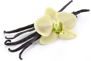 How to Make Perfume With Vanilla Extract