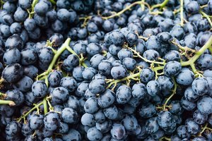 How to Clean Grapes Treated With Sulfur Dioxide