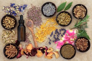Naturopath Vs. Homeopath