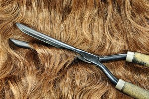 About Vintage Curling Irons