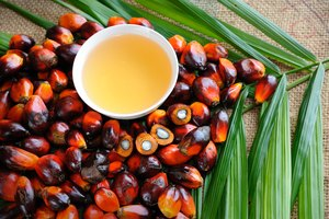 What Is Palm Olein?