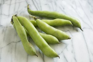 How to Freeze Fava Beans