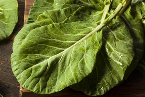 How to Freeze Fresh Collard Greens
