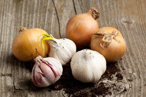 Can You Substitute Dried, Minced Onions for Fresh Onions?
