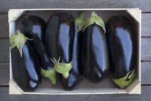 Can You Freeze Eggplant?