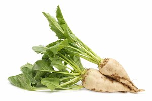 How to Cook Sugar Beets