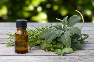 How to Take Staphysagria Homeopathic Remedy