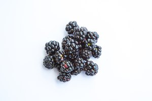 How to Dry Blackberries