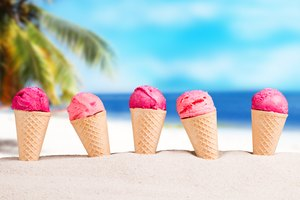 Dolly Madison Ice Cream Maker Instructions