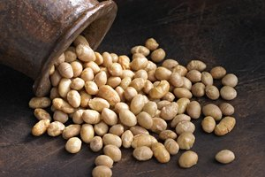 How to Roast Soybeans