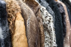 How to Find the Value of a Mink Coat