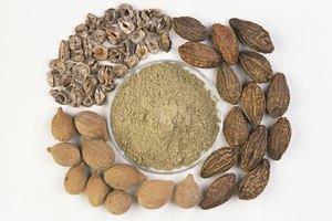 ¿Cuáles son los peligros de la fruta amalaki?