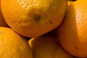 Types of Orange Liquors