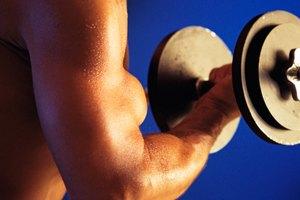 Ejercicios para la cabeza larga de los bíceps