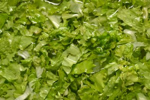 How to Keep Bagged Lettuce From Spoiling