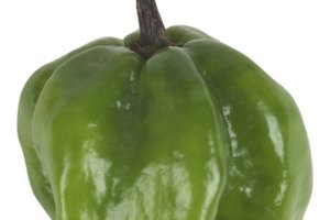 How to Peel Poblano Pepper