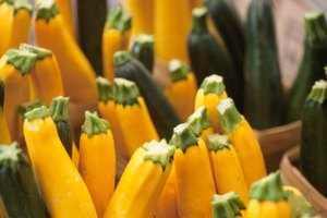 How to Blanch Squash for Freezing