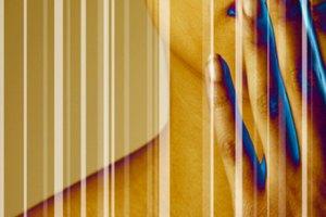 Barreras personales, físicas y semánticas para una comunicación efectiva