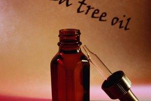 Información sobre el champú Paul Mitchell Tea Tree Oil