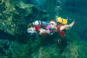 What Risks Do Marine Biologists Have?