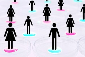 Controversial Issues Between Men and Women
